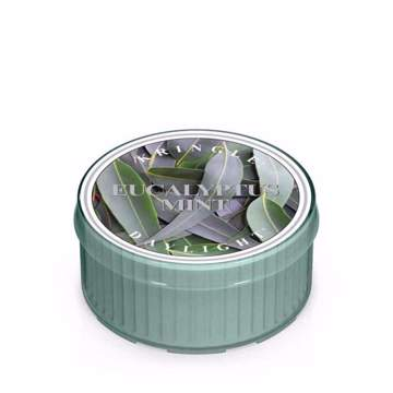 Immagine di Eucalyptus Mint - DayLight Kringle Candle