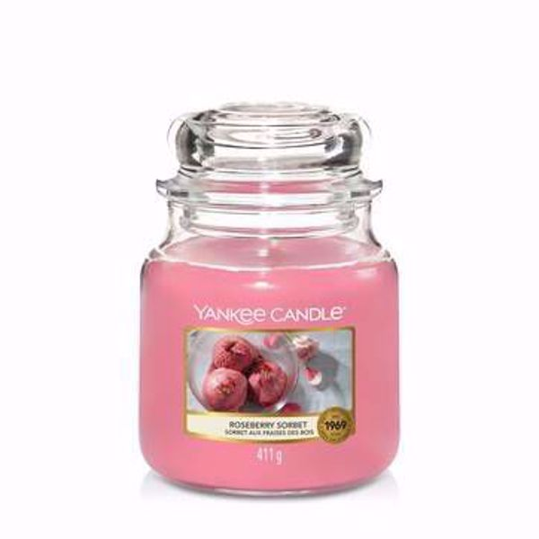 Immagine di Candela in Giara Media Roseberry Sorbet